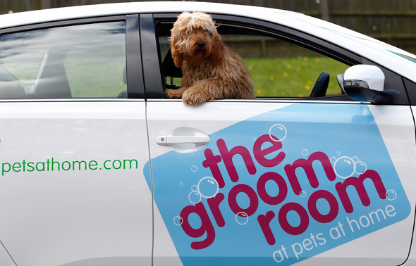 Auris Hybrid is top dog with The Groom Room - Toyota