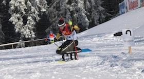 Andrea Eskau Paralympics TMG sled