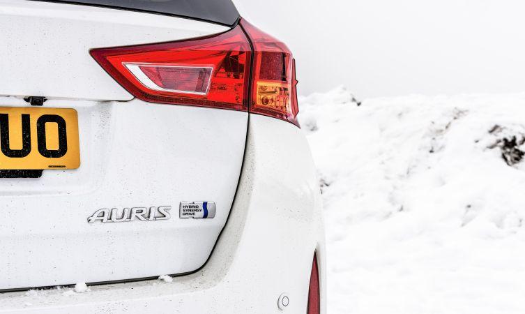 Auris để Auris: một chuyến du ngoại đến dãy Alps