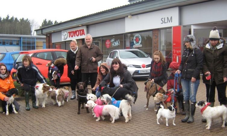 Toyota Comic Relief RND15 Dog Walk