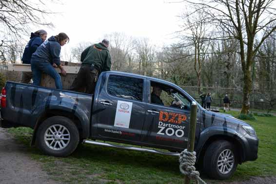 Toyota Hilux wolf Dartmoor Zoo (4)