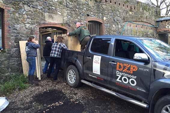 Toyota Hilux wolf Dartmoor Zoo (5)