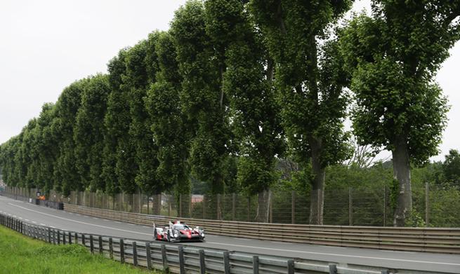 Le-Mans-2016-c