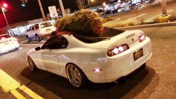Supra christmas tree