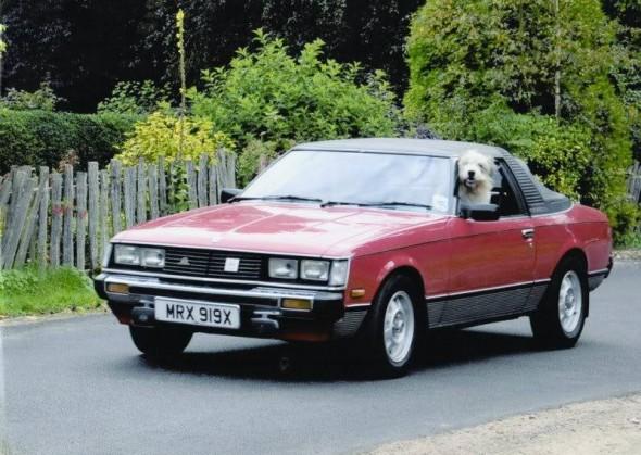 ian condliffe dog rowley, 1981 celica sunchaser convertible