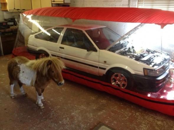 toyota horsepower